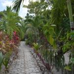 Foto di Maya Palms Resort & Dive Center