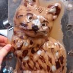 zelfgemaakte chocolade kat
