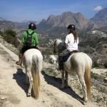Hoof and Mountain Adventures