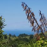Photo de Manawa Ridge