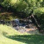 Landscape - 2's Company Farm Creek Cabins Photo