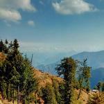 The Wilderness Photo