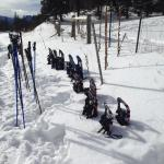 Snowshoes lined up to choose from.