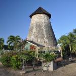 Foto di The Cotton House
