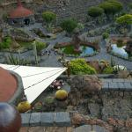 Jardin de Cactus Restaurant