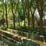 Une autre partie des jardins qui rappelle l'Alhambra