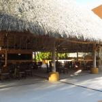 Common area for barbecues, etc. located by Jungle Club pool