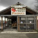 Snowgoose Produce