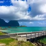Arajilla Retreat - Lord Howe Island