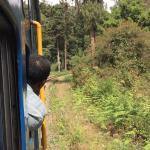View from the train on the way to Lovedale from Coonoor