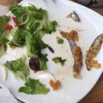 caterpillar in the salad