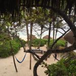 Playa Selva Foto