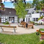 Der Innenhof mit Biergarten, neuer Kaffeerösterei und Spielmöglichkeit für die Kids.