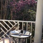2nd floor patio open to my room overlooking the tulip tree – glass of wine and a book.