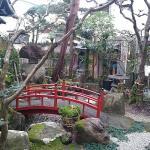 Garden in the hotel
