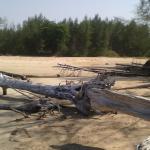 Photo of The Andamania Beach Resort