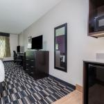 Newly Renovated Guest Room