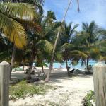 Photo de Seascape Inn, Andros