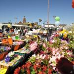 Earlestown Saturday Flea & Craft Market