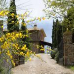 Photo of Agriturismo Fattoria Capobianco