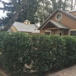 Cottage #2-front patio area