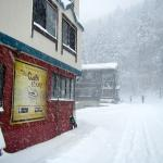 Craft Room bar in foreground. Kamoshika in background. Japanese pow all around. 70cm over night!