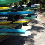 United colours of Waves surf school