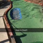 This is the Animal Side of the Mini Golf Course