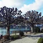 Nachbarort Stein am Rhein - Uferpromenade