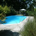 Private inground heated  salt water pool