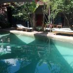 Pool - Hotel Esplanada Photo