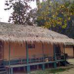 Nature Hunt Eco Camp, Kaziranga National Park Foto