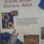 Coyote Ridge Natural Area Foto