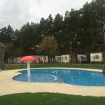 Pool - BIG 4 Barossa Tourist Park Photo