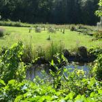 Billnas Garden & Bistro