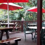 Terrace Tea Garden