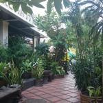Nice patio/garden