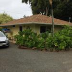 17 Palms Kauai Foto