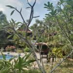 Battambang Resort Photo