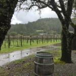 Casa Nuestra Winery and Vineyards