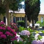 Photo of Villa Elena