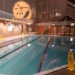 Pool area, gym and locker room