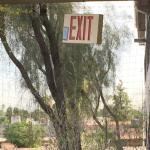The outdoor emergency EXIT sign dangling by wires.   That can't be safe.   At least it was there