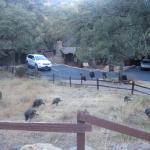 Photo de Santa Rita Lodge