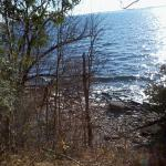 Foto de Lemoine Point Conservation Area