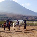 Croagh Patrick Stables
