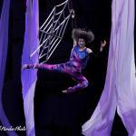 Sailor Circus Aerial Arts