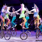 Sailor Circus Unicycle