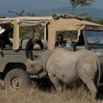 Close encounters on a game drive