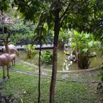 Photo de Sonalong Boutique Village & Resort